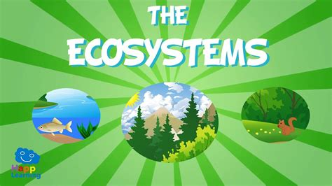 the ecosystem educational video for kids youtube