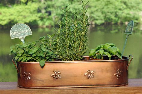 Copper Outdoor Planters by Copper Finish Oblong Metal Planter Contemporary