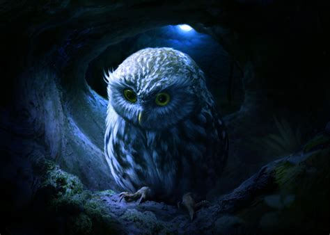 Background Digital Owl Wallpaper by Owl Hd Artist 4k Wallpapers Images Backgrounds