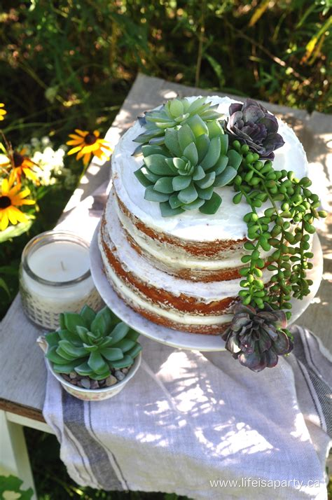 succulent naked cake life   party