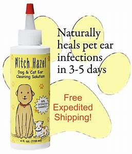 witch hazel dog and cat ear cleaner solution infection With dog ear cleaning solution