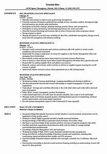 Business Analyst Specialist Resume Samples