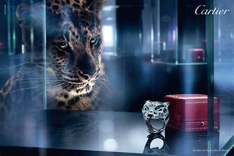 ipgs creation bags cartier chinas pr business