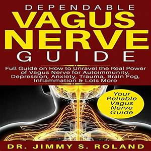Amazon Com  Dependable Vagus Nerve Guide  Full Guide On