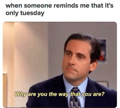 Tuesday Memes 18 - tuesday memes 18 28 images tuesday memes 18 28 images it s tuesday you could use 17 best