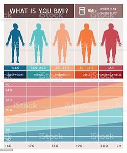 Body Mass Index Infographic Stock Illustration