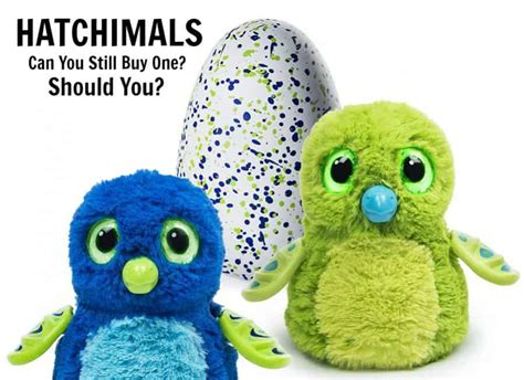 can you still buy xmas tensil hatchimals can you still buy one should you alpha