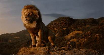 Action Lion King Mufasa Scar Disney Trailer