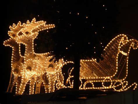 lichterkette weihnachten rentiere kostenloses foto auf