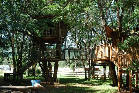 Oregon's Out'n'about Treehouse 'treesort' Has The World's