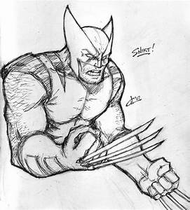 The Wolverine Drawing See Best Of Photos Of The