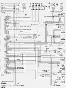 Nissan Ecu Wiring Diagrams  U2013 Dogboi Info