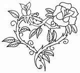 Coloring Roses Pages Printable Adults sketch template