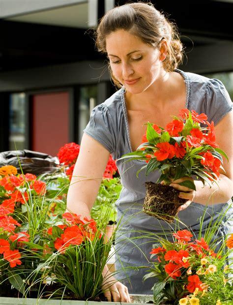 Balkonpflanzen Die Viel Sonne Vertragen by Balkonpflanzen Viel Sonne Blumen Und Balkonpflanzen