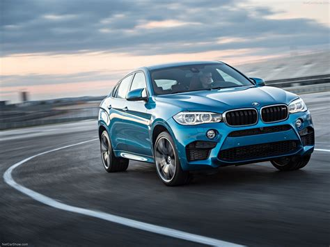 Bmw X6 M Picture by Bmw X6 M Picture 32 Of 36 Exterior Detail My 2016