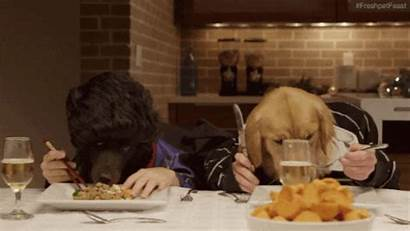 Eating Animated Dinner Human Dog Gifs Dining