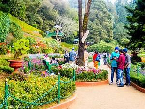 Ooty: botanical garden