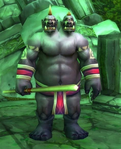 Gordok Ogre-Mage - Wowpedia - Your wiki guide to the World ...