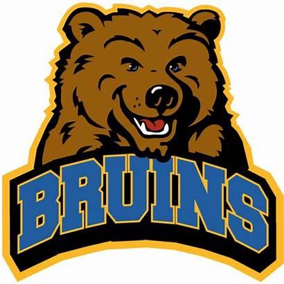Ucla Bruins Logos Bruin University Campus Alternate
