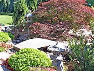 Asiatische Gärten Gestalten : asiatische g rten ober sterreich magazin ~ Sanjose-hotels-ca.com Haus und Dekorationen