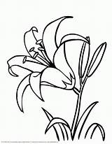 Coloring Pages Crayola Flower Popular sketch template