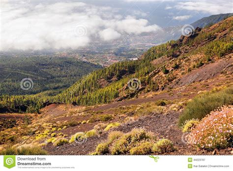 european house plans scenic landscape of mountain valley stock photo image
