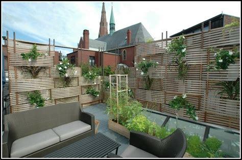 Balkon Sichtschutz Pflanzen by Hohe Pflanzen Als Sichtschutz Balkon Page Beste