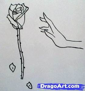 How to Draw a Hand Reaching For a Rose, Step by Step ...