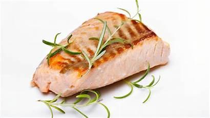 Salmon Grilled Flatten Tfx Foods Tummy Help