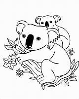 Coloring Koala Printable Chameleon Adults Coloringbay Prev sketch template