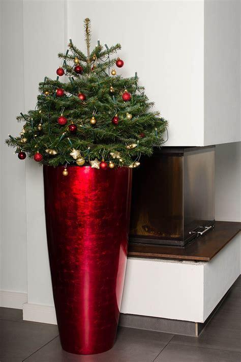 Blumenkübel Weihnachtlich Dekorieren by Weihnachtliche Pflanzk 252 Bel Deko