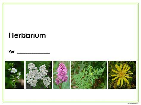 Conheça todos os produtos herbarium. Herbarium Vorlage Zum Ausdrucken