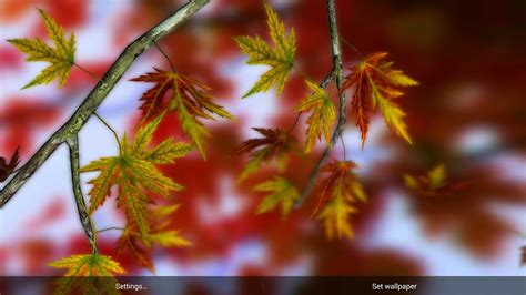 Autumn Themed Wallpapers For Android by Autumn Leaves In Hd Gyro 3d Parallax Wallpaper Android
