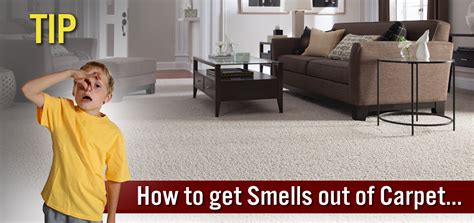 how to get smell out of the best way to get rid of carpet smells the carpet guys