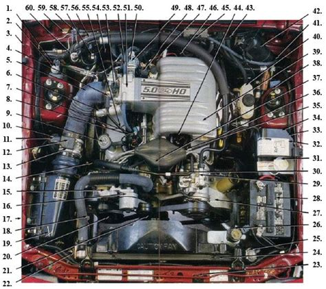 Fox Body Engine Compartment Diagram Mustangs