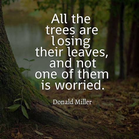 real  nature quotes life quotes