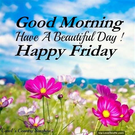 Friday Morning Quotes Morning A Beautiful Day Happy Friday Pictures