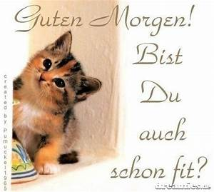 Guten Morgen Bilder Fürs Handy :  ~ Frokenaadalensverden.com Haus und Dekorationen