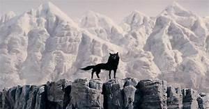 Mr Fox : wolf fantastic mr fox wiki fandom powered by wikia ~ Eleganceandgraceweddings.com Haus und Dekorationen