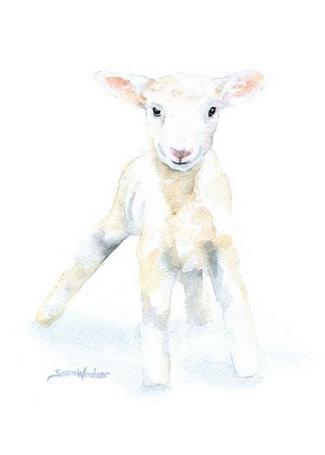 ideas  sheep drawing  pinterest   draw