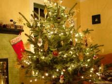 taking care of christmas trees how to care for a wood fence hgtv