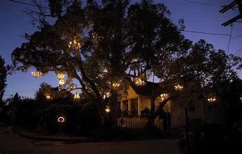 chandelier tree  silver lake colossal