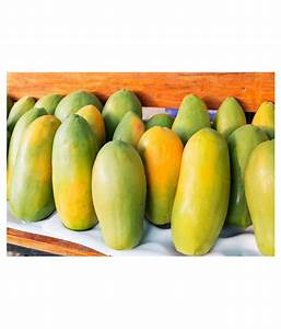 Garden Plants Thai Papaya Hybrid Variety Dwarf Fruit 50
