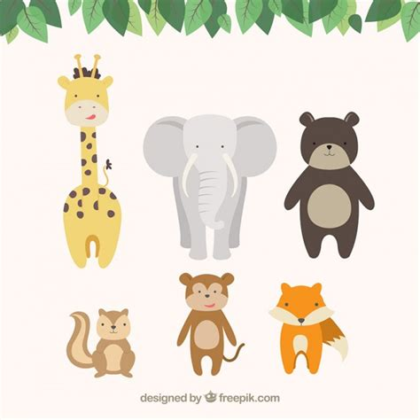 zoo vectors   psd files