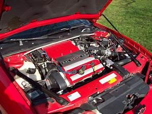 97 Monte Carlo Engine Diagram