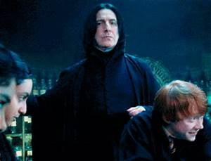 Severus Snape Obviously GIFs - Find & Share on GIPHY