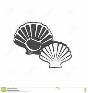 Oysters Vector Illustration Stock Vector - Illustration of ...