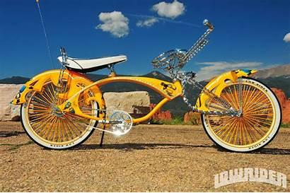 Lowrider Bicycle State Mind Trike Bike Custom