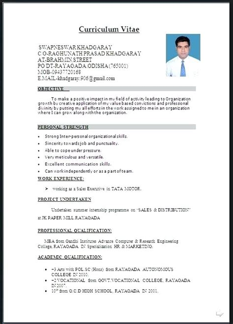 resume format  word file   cv templates cv