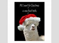 Alpaca Christmas Postcard Zazzlecom